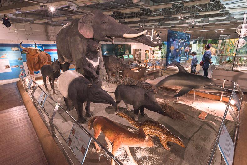 รีวิว เที่ยว ปทุมธานี พิพิธภัณฑ์ วิทยาศาสตร์