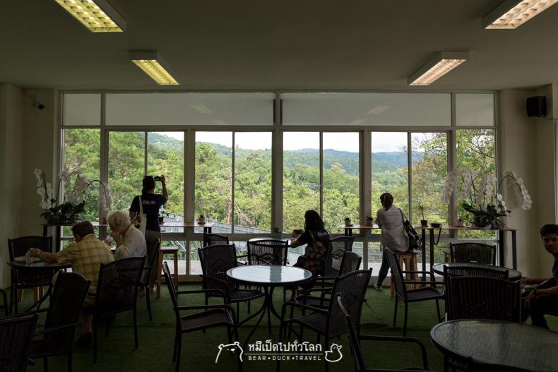 รีวิว เที่ยว เชียงใหม่ ลำปาง สถานที่ท่องเที่ยว ร้านอาหาร ที่พัก โรงแรม