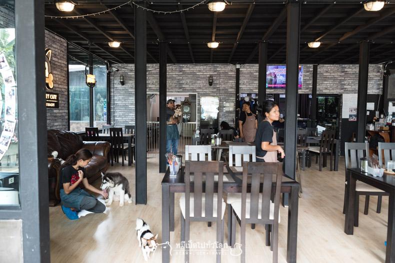 รีวิว ร้านอาหาร คาเฟ่ หมา