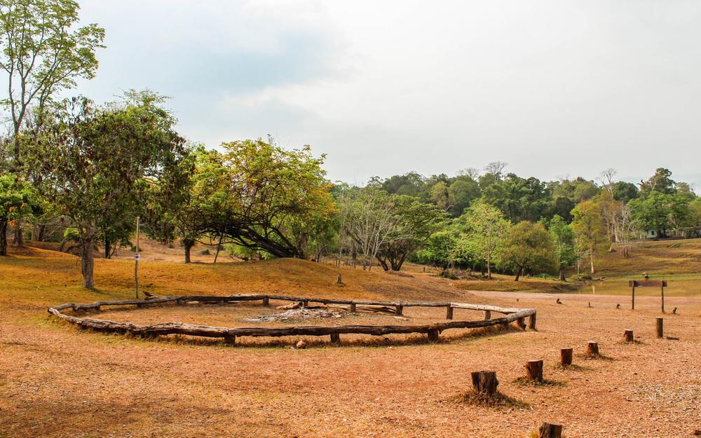 เที่ยว ชัยภูมิ traveloka เขตรักษาพันธุ์สัตว์ป่าภูเขียว ป่า ธรรมชาติ