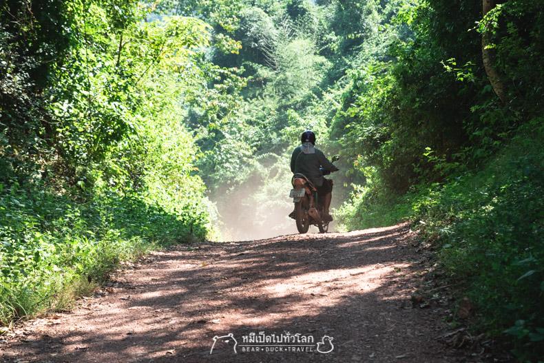 รีวิว กิน เที่ยว หมีเป็ด เพชรบุรี ป่า เขา เต็นท์